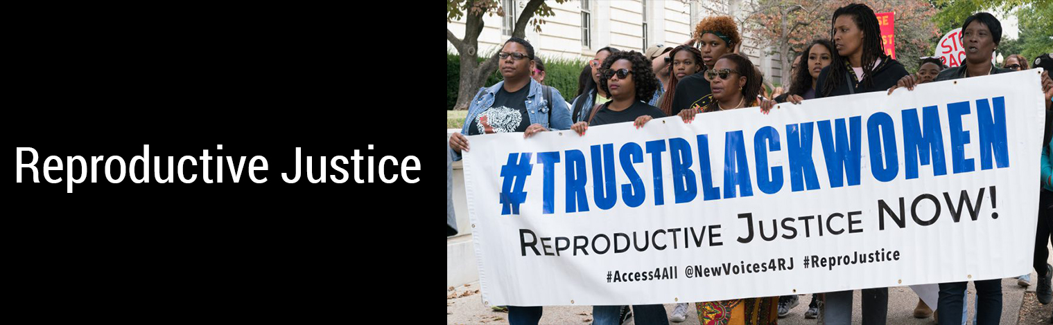 Reproductive Justice banner